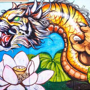 Live Dragon Tiger (Pragmatic Play) pelin tarkistus