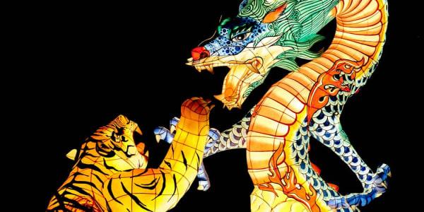 Dragon Tiger: Suosittu live-kasinopeli